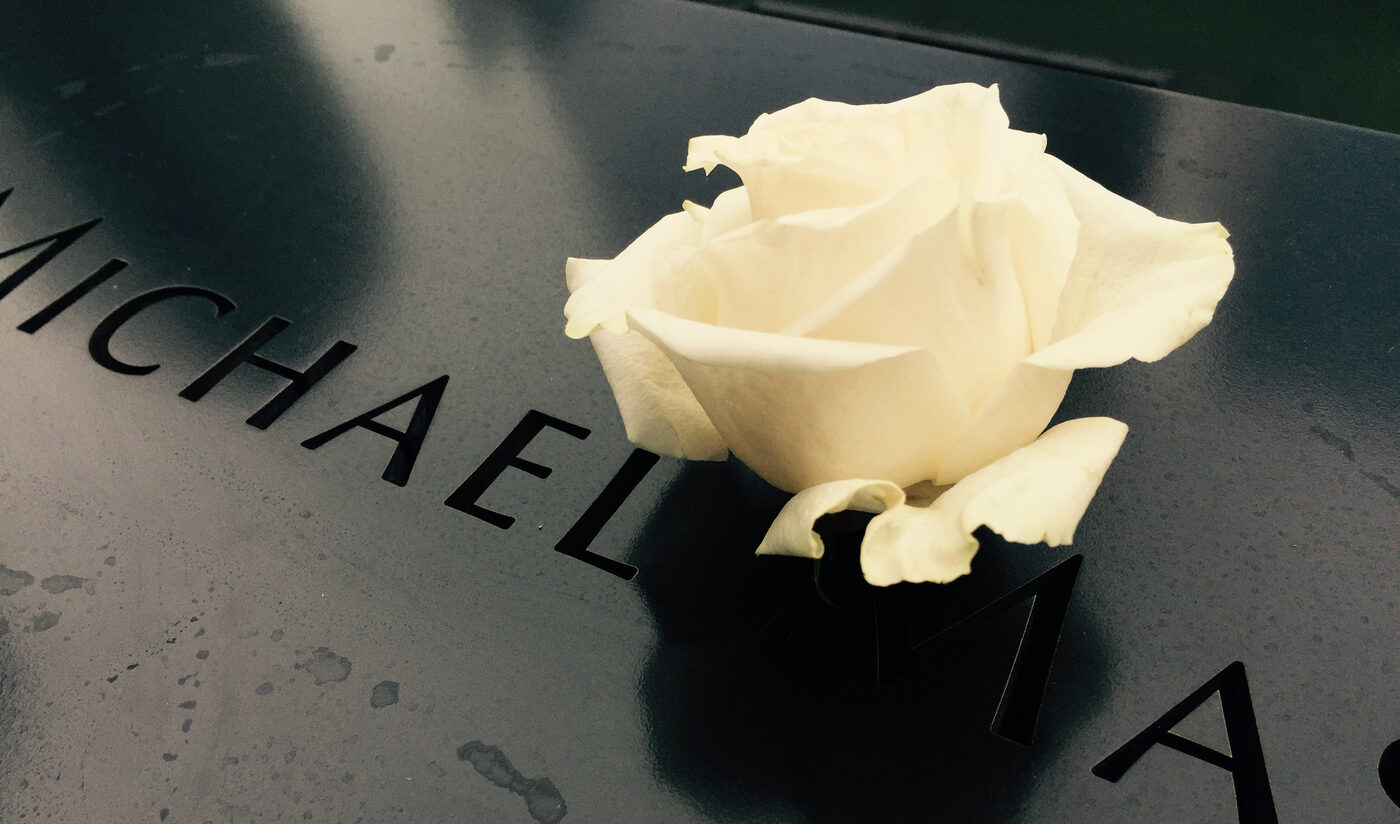 Single white rose at the Sept. 11 memorial.
